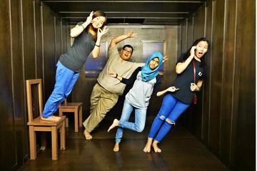 Penang 3D Trick Art Museum Admission...