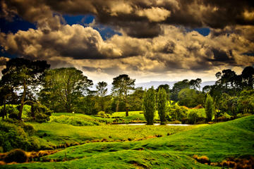 Tauranga Shore Excursion: Lord of the Rings Hobbiton Movie Set Tour...