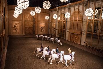 Equestrian show La Voie de l'écuyer