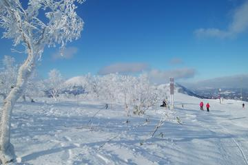 Shared Departure Transfer :  Ski Resort in Hokkaido to Shin Chitose Airport