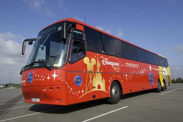 Shared Transfer: Airport to Disneyland Paris