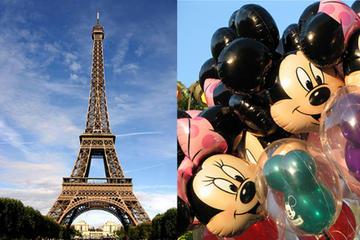 Traslado privado de Paris à Disneyland