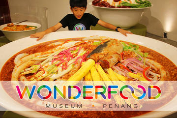 Wonderfood Museum Penang Admission...