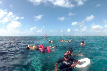 Hol Chan and Turtle Garden Snorkeling Tour