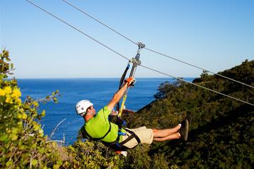 Day Trip Catalina Island Day Trip from Anaheim or Los Angeles with Zipline Adventure near Anaheim, California