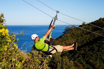 Éco-visite en tyrolienne à Catalina Island au départ d'Anaheim ou de...