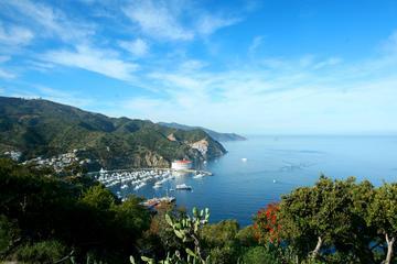 Viagem diurna pela Ilha Catalina...