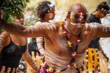 Meeanjin to Minjerribah: Stradbroke Island Indigenous Culture Cruise from Brisbane