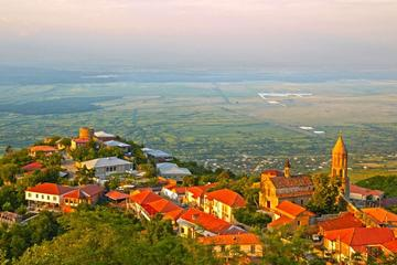 Low Cost Wine Tour in Kakheti