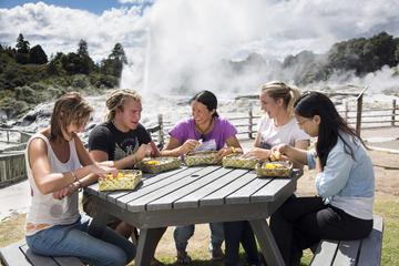Maorisk kulturrundtur i Te Puia med ångkokt lunch