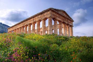 Escursione giornata intera a Segesta, Erice, Trapani e Saline da Palermo