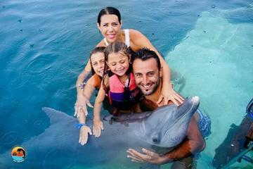 Swimming with Dolphin costomize Ubud Waterfall Uluwatu Sunset Tour