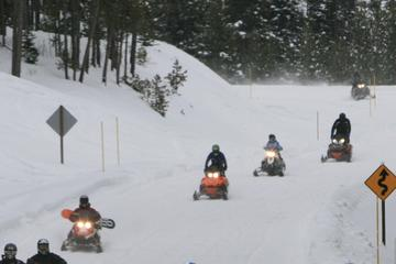 Book Discover Ontario Winter with a Snowmobile Tour on Viator