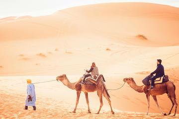 2-Day Sahara Desert Camel Trek in...