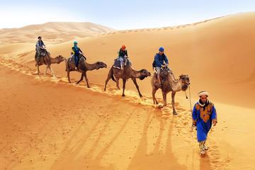 Atardecer o amanecer Paseo en camello...