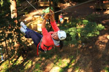 Trees Adventure Dwellingup: Tree Ropes & Zipline Experience