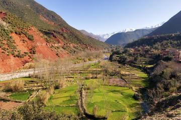 Excursión de un día a tres valles desde Marrakech con visita opcional...
