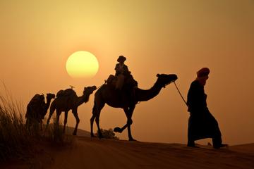 Kamelritt bei Sonnenuntergang im...