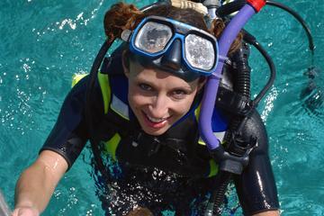 Costa Maya Shore Excursion: 2-Tank Scuba Dive