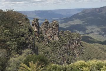 Blue Mountains and Three Sisters Bush Adventure Tour from Sydney