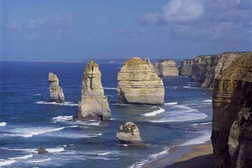 Excursion aller-retour d'une journée sur Great Ocean Road et The 12...