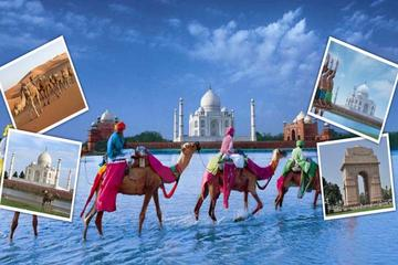 04 Nights Golden Triangle Tour