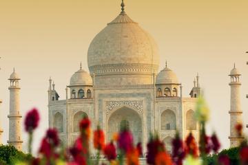 Golden Triangle Tour with Jodhpur