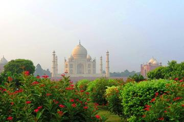 Golden Triangle Tour with Professiona Guide