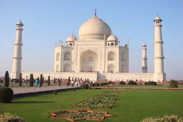Half Day Tour of Taj Mahal with Agra Fort