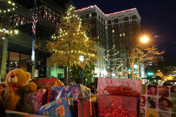 Day Trip Greenville Holiday Lights Tour near Greenville, South Carolina