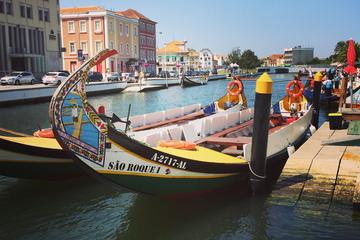 Private tour Aveiro and Coimbra from...
