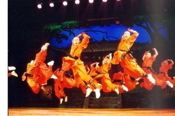 Excursion privée à Pékin: spectacle Shaolin Kung Fu et dîner...