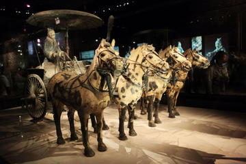 Half-Day Tour of the Terracotta Warriors and Horses Museum From Xi'an