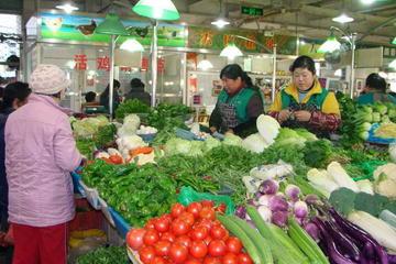 Seja um Verdadeiro Cidadão de Pequim por Um Dia: Tai chi, Bolinhos...