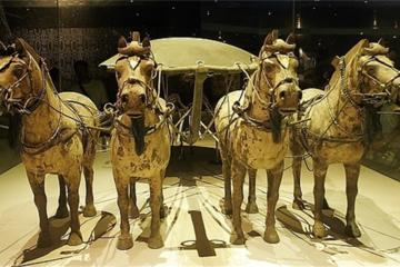 Xi'an Airport (XIY) Arrival Transfer with Visit of Terracotta Warriors and Horses Museum
