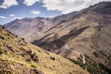 Aventura de Verão de 7 Noites nas Montanhas Alto Altas, saindo de...