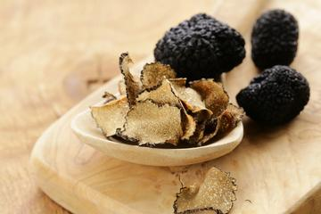 Guided Truffle Hunt in Tuscany with Light Gourmet Lunch