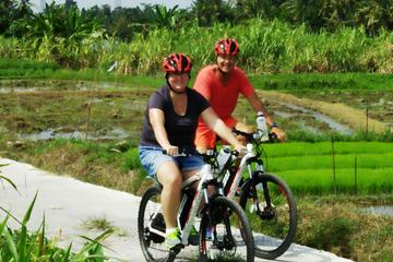Electric bicycle tour in quaint South Ubud