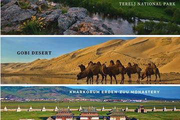 Amazing 9 days adventure in Mongolia