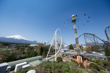Viator Exclusive: Fuji-Q Highland Afternoon Admission Ticket and Meal Coupon