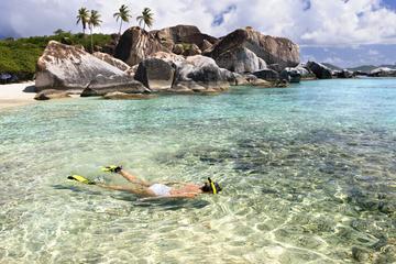Cruzeiro para Mergulhar com Snorkel com Festa em Cap Cana, saindo de...