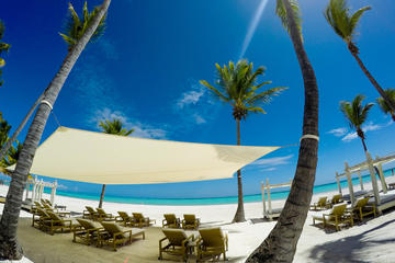 Escapada a Scape Park en Playa Juanillo desde Punta Cana