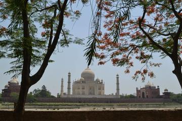 Private Taj Mahal Tour by Gatiman Exp