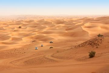 Safari i Dubais öken med fyrhjuling, kamelridning, BBQ-middag och ...