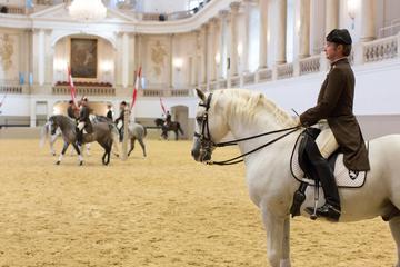 Escuela Española de Equitación: entrada al ejercicio por la mañana en...