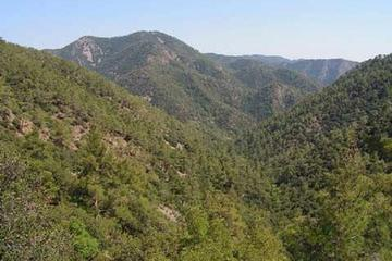 Troodos and Kykkos Day Tour from