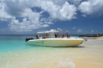 Excursion hors-bord et snorkeling à...