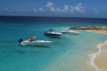Privéboottocht op een speedboot: Sint ...