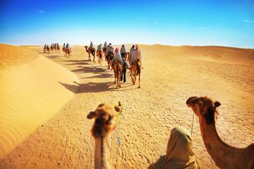 Ökenupplevelse: Kamelsafari med middag och emirataktiviteter från ...