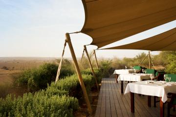 Passeio pela Conservação com Lanches no Al Maha Desert Resort e...